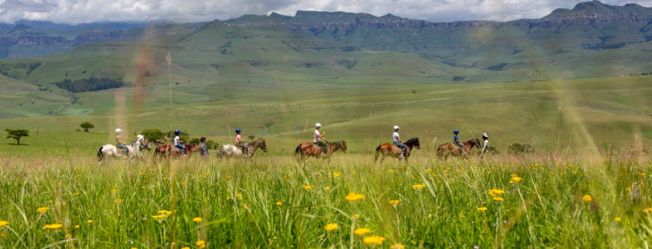 Experience The Magnificent Eland Trail